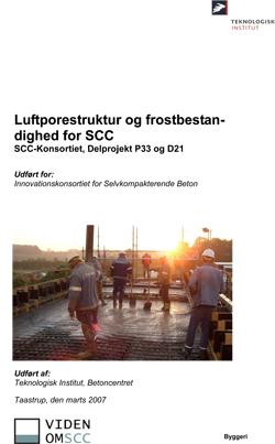 Leftporestruktur og frostbestandighed for SCC